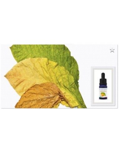 EnjoySvapo Tobacco DRY4 Aroma Concentrato 10 ml