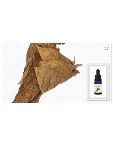 EnjoySvapo Tabacco USA mix Aroma Concentrato 10 ml